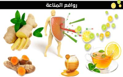 أنواع العلاجات